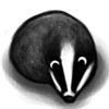sillybadger